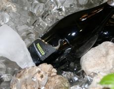 Wines, encounters, tastes
