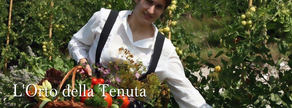 Der Gemüsegarten des Weinguts